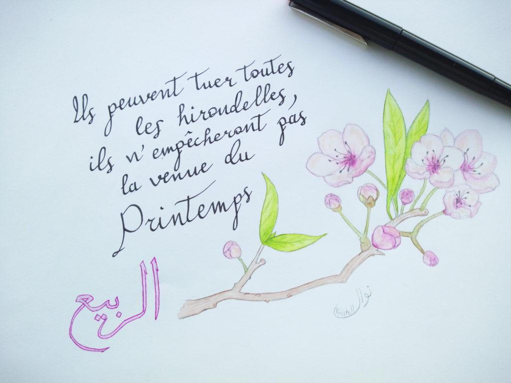dessin proverbe printemps